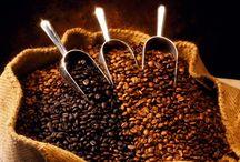 cafe solo cafe