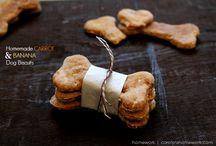 dog treats / by Mandi Campbell