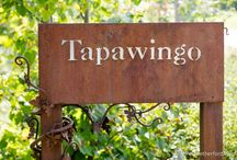 Tapawingo Wedding Venue A Matter of Taste Ellsworth, Michigan Photography by Paul Retherford