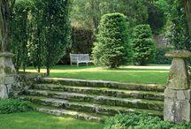 coutyard garden