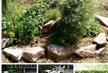 Progetti per giardino