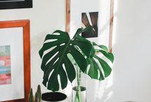 Plantas na decor! / O verde é a cor de 2017 e merece um espacinho na sua casa. Separamos algumas inspirações para você. ;)