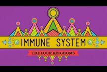 Body Systems; Immune
