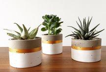 Concred pots