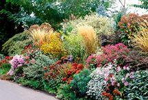 Gardening - plans
