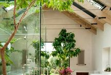 Glass house & interior / by Xavier Lim