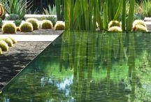 Bassin - Pond