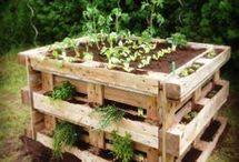 Gartenentwürfe