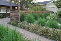 Wall Border Garden