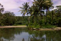 Treasure of Indonesia