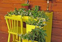 Peyzaj / Bahçe Tasarımı ve Fidancılık Hakkında Her Şey
