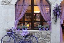 Lavender,Levendula,Lavendel
