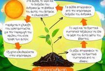Μελέτη Περιβάλλοντος - Φυσική