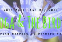 yoga retreat / Feel the magic at Denmark Farm Spring Retreat. A long weekend bursting with activities to nourish your body, mind and soul. From 28th April to 1st May 2017