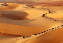 Sahara Desert / The mystique of the greatest desert in the world.