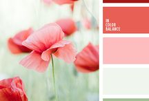 decorating with poppies
