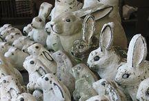 Bunnies! / I like bunny rabbits.