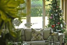 Christmas / Interior design ideas and creative inspiration for the festive season.