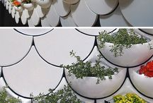 MinD IMG - plantas e vasos