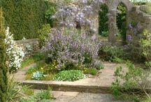gardening / by Angela Tighe