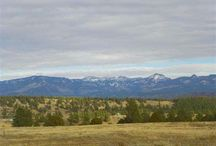 Lot 8 Bristlecone Drive, Pagosa Springs, CO 81147 / Listing Broker -  Shelley Low This exclusive offer is only available for a short time with only 5 lots left available. All other lots in Timber Ridge are 3+ acres. Huge mountain views that will take your breath away, level building sites and all road maintained by the newly developed Metro District