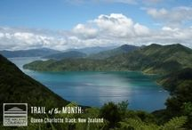 Trail of the Month