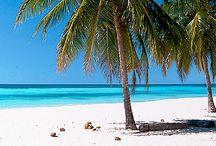 Voyage en Guadeloupe / Vous rêvez de farniente et de soleil ? Cap sur un voyage en Guadeloupe. Entre mer bleue, plages superbes, paysages divers et variés, forêts, lagons, marchés colorés et épicés, musiques invitant à la danse, vos vacances en Guadeloupe vous invitent à la détente.
