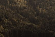 Nature / Pics of Nature :)