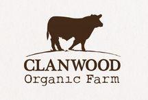 Cow logo ideas