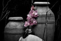 Szürke képek  ˝˝{Minden szürkén)˝˝