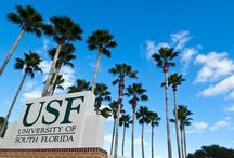 USF Bulls! / Go Bulls! The University of South Florida is a high-impact, global research university dedicated to student success. USF is a Top 25 research university among public institutions nationwide in total research expenditures, according to the National Science Foundation. Serving over 48,000 students, the USF System has an annual budget of $1.6 billion and an annual economic impact of $4.4 billion. USF is a member of the American Athletic Conference.
