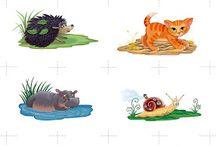 zvířátka,drobní živočichové,hmyz