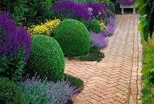 dom zahrada