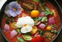 Culinary Shades / Culinary Shades