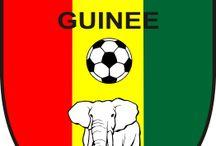 1.GUINEA