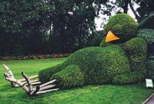 Garden Topiary / Some seriously incredible garden work! / by Backyard Chicken Coops
