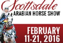 Total Horse Channel / Ocala Wedding & Events Expo 2016 Partner. / Total Horse Channel is an Internet Broadcasting Network for the Horse Industry. We broadcast horse related videos and LIVE Streaming of shows, events, and more!! This site is for all the horses lovers and horse inquisitive. https://www.facebook.com/totalhorsechanneltv/timeline http://totalhorsechannel.com/