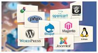 Web Design Development Packages / FATbit Technologies offers best web solutions at affordable prices.