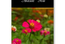 Greeting cards n Notecards / designs for  cards