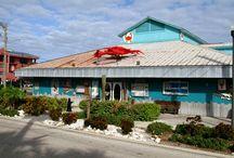 Restaurants in Indian Rocks Beach, FL