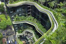 Зеленые идеи