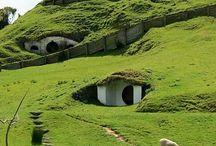 New Zealand! ! / by Elizabeth Hildebrandt
