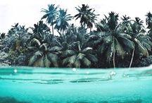 Beaches/Tropical