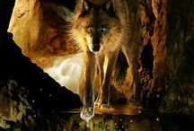 wolfs. i was a wolf and he my moon.