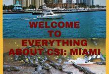 Everything About CSI: Miami