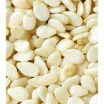 Bulk supplier Fennel Seeds in India