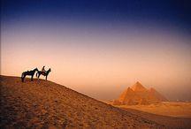 Kairó - Egyiptom utazás / Kairó az egyik legvarázslatosabb város az egész világon. Színek, illatok, érzések kavalkádja, tipikusan Közel-Keleti fűszerezéssel. Látogassunk el ide akár egy fakultatív kirándulás, akár egy hétvége során, mindvégig az az érzésünk lesz, hogy MÉG, MÉG, MÉG többet akarunk látni ebből a városból. Last minute Kairó utazás ajánlatok: http://www.divehardtours.com/Kairo/