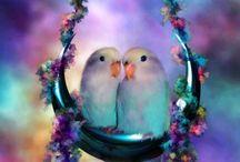 Birds / by Patricia Houston Cupp