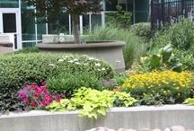Avant Gardener Designs