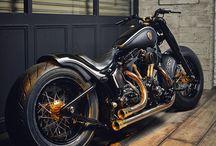 Harley Bober